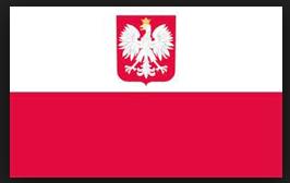 lengyel fordítás